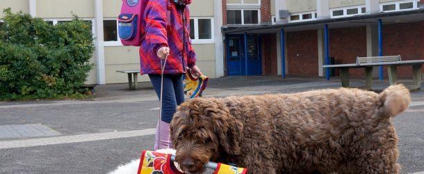 """Hundgestützte Pädagogik bei den """"Kastanien"""" in der Schule Langbargheide:"""